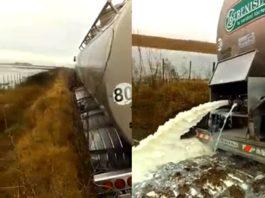 Descartan 21 mil litros de leche por las inundaciones