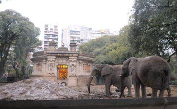 La privatización del ex Zoo de la Ciudad a punto de convertirse en ley