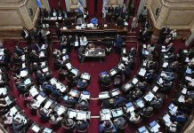senado, presupuesto 2019, interbloques