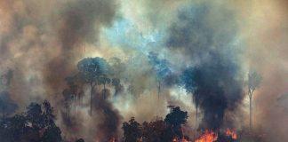 amazonas, incendio, helicopteros, rescatistas